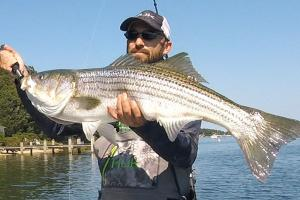 Braggin' Board Photo: Surfcasting Stripers