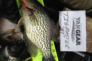 Braggin' Board Photo: Crappie photo 4