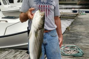 Braggin' Board Photo: Striper Fishing