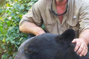 Braggin' Board Photo: Black Bear Caught in Florida