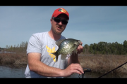1Source Video: Pitch Lite Jigs For Panfish in The Spring and Early Summer