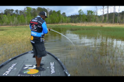 1Source Video: Ish's Tip: Match the Hatch With a Spinnerbait