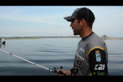 1Source Video: How to Fish When the Shad Spawn