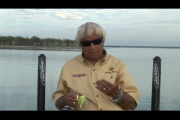 1Source Video: How To Fish a Spinnerbait