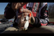 1Source Video: Evers Tip: Spinner Blades for Cold Muddy Water