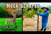 Easy Guide to Make Mock Deer Scrapes