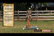 1Source Video: Retriever Training:  Direct Your Dog using this Casting Drill