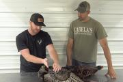 How To Prep A Turkey For The Taxidermist | Cabela's Turkey Roost
