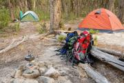 News & Tips: The 3 Most Important Things About Dispersed Camping on Public Land...