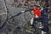 News & Tips: Tree Stand Safety Featured on Bass Pro Shops Outdoor World Radio...