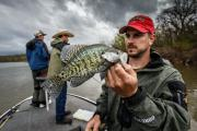 News & Tips: Plan a Crappie Fishing Trip to Any of These Top 7 Waters in Virginia...