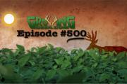 Graphic with one deer in field of soybeans for GrowingDeer.tv Episode #500