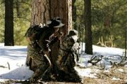 News & Tips: Forget What You Know About Elk Hunting and Use These Tips Instead...