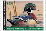 News & Tips: The Federal Conservation Duck Stamp