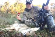 News & Tips: 3 Advantages to Hunt Coyotes in Early Fall...